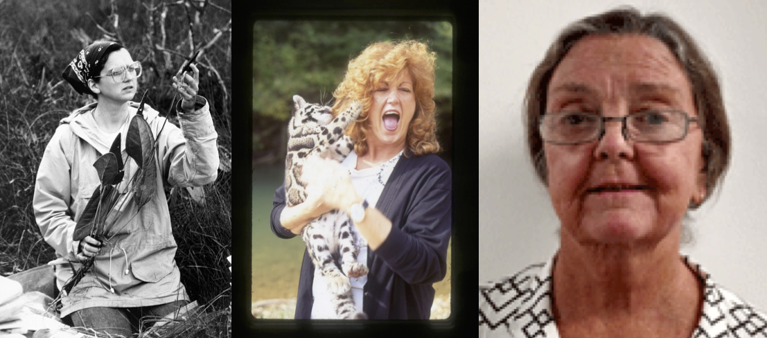 photos of Vicki Funk, JoGayle Howard, and Pamela Vandiver